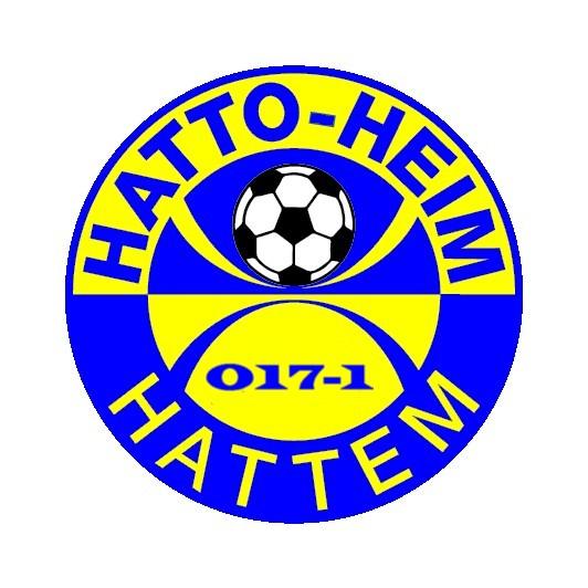 sv Hatto-Heim  JO17-1 - 't Harde JO17-1
